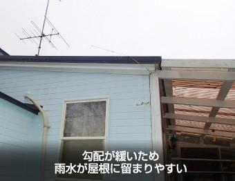 勾配が緩く雨水が溜まりやすい屋根