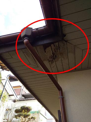 伊豆市で軒天が破損  部分的な屋根カバー工法で雨漏り解決