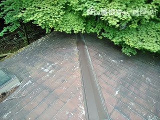 裾野市十里木屋根雨漏り現調