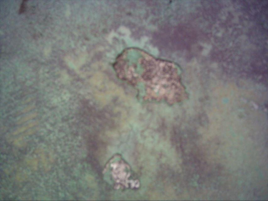 三島市ベランダ防水破損