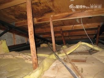 屋根裏雨漏り調査