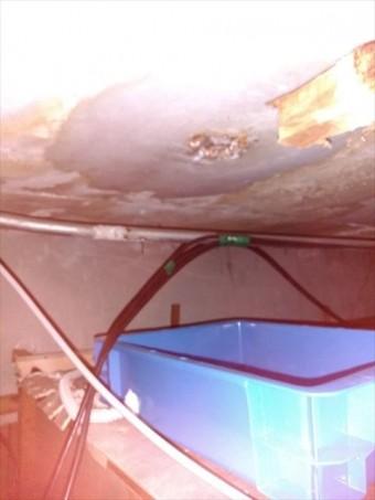 沼津市屋根裏から雨漏れ