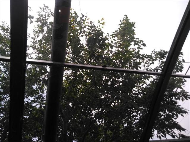 沼津市カーポート ポリカ