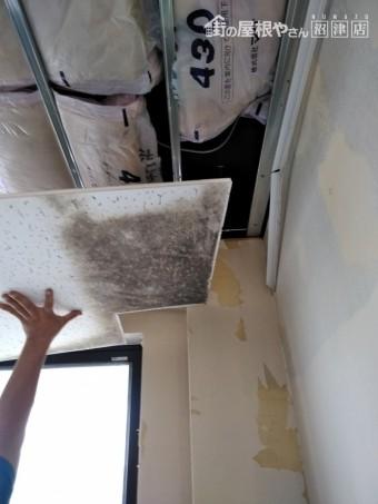 裾野市アパート天井材に黒カビ