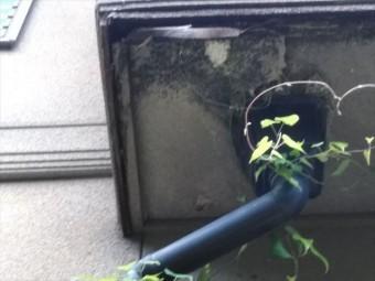 裾野市屋根塗装現地調査雨樋