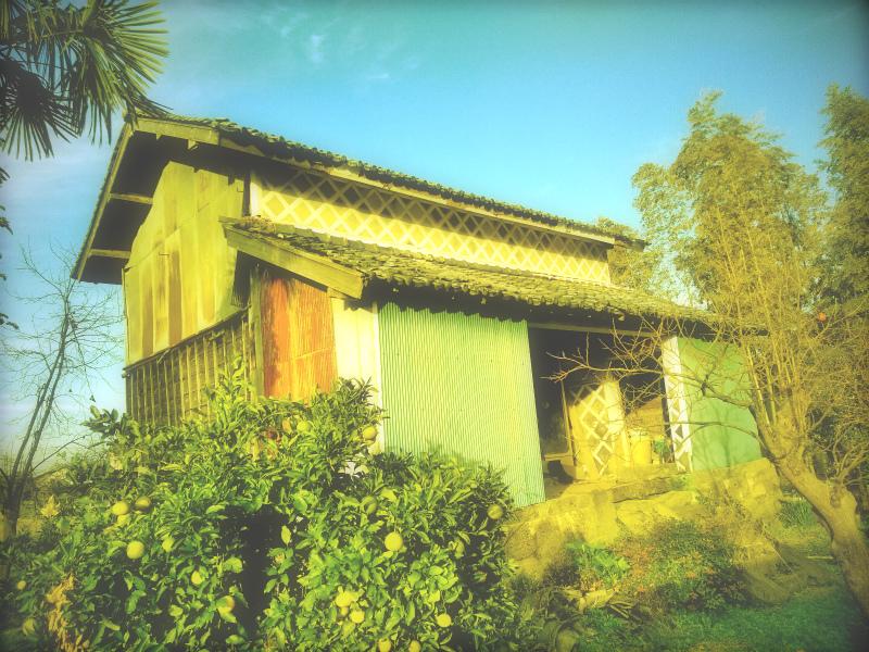 沼津市で倉の建物で壁屋根の現調に行ってきました。