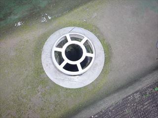 排水口ひび割れ