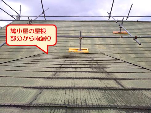 伊豆の国鳩小屋雨漏り