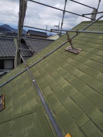 伊豆の国雨漏り鳩小屋